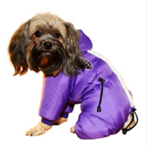 Зимний комбинезон «Полярник» фиолетовый для мальчика